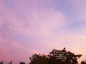 Zumbihl-Florence-Natur-Sommer-2018-Himmel